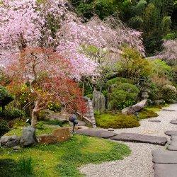 数寄屋造り・離れ家の湯宿 古奈別荘